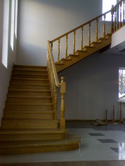 Лестницы в Брянске